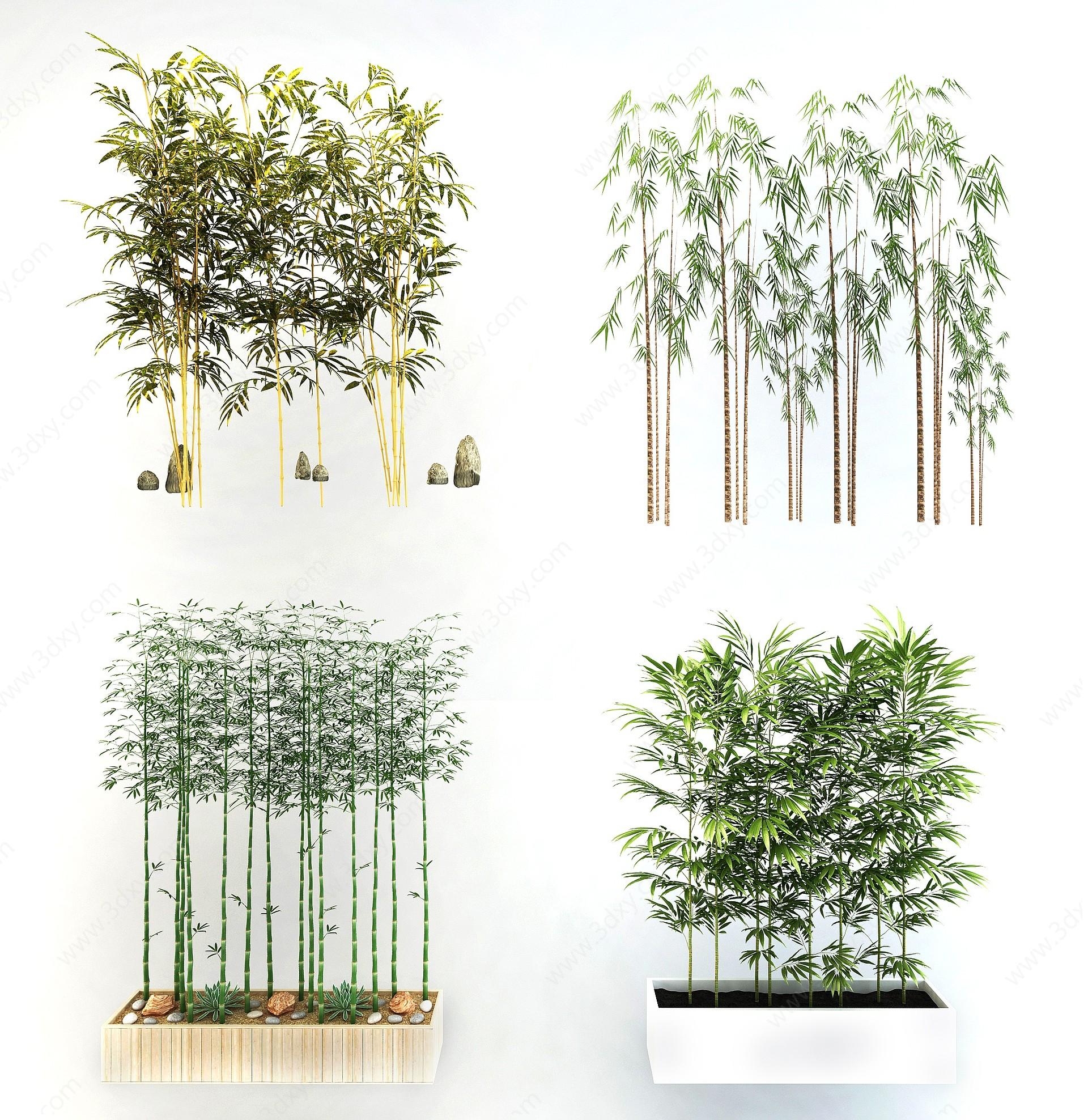 竹子植物盆栽組合3D模型