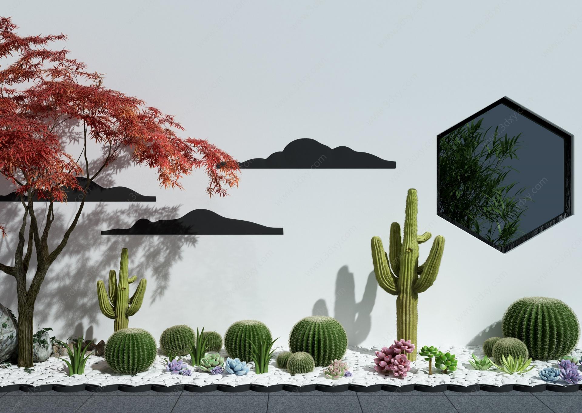 現代仙人掌多肉植物景觀3D模型
