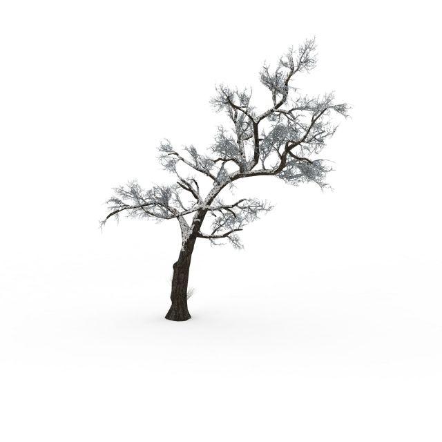 植物3d模型 树3d模型 雪树3d模型  2000*2000像素的png高清大图 模型