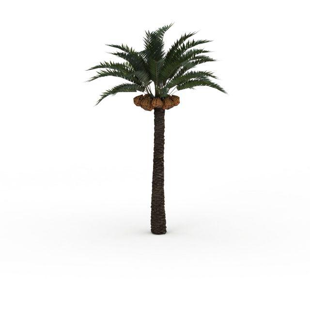 菠萝树模型