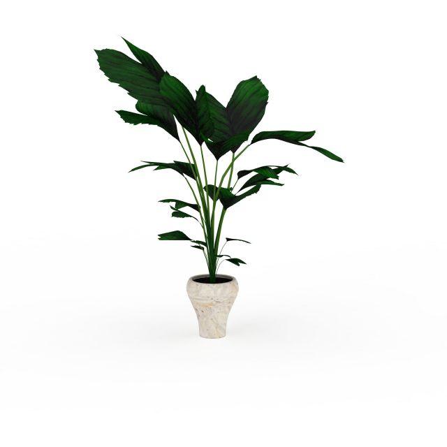 大叶绿色植物模型