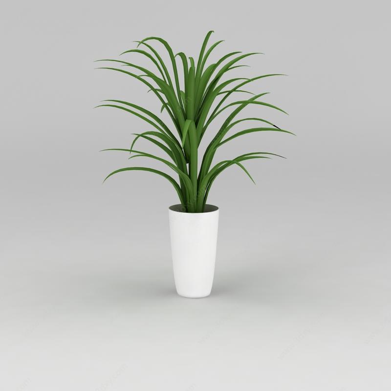 大厅花卉绿植模型