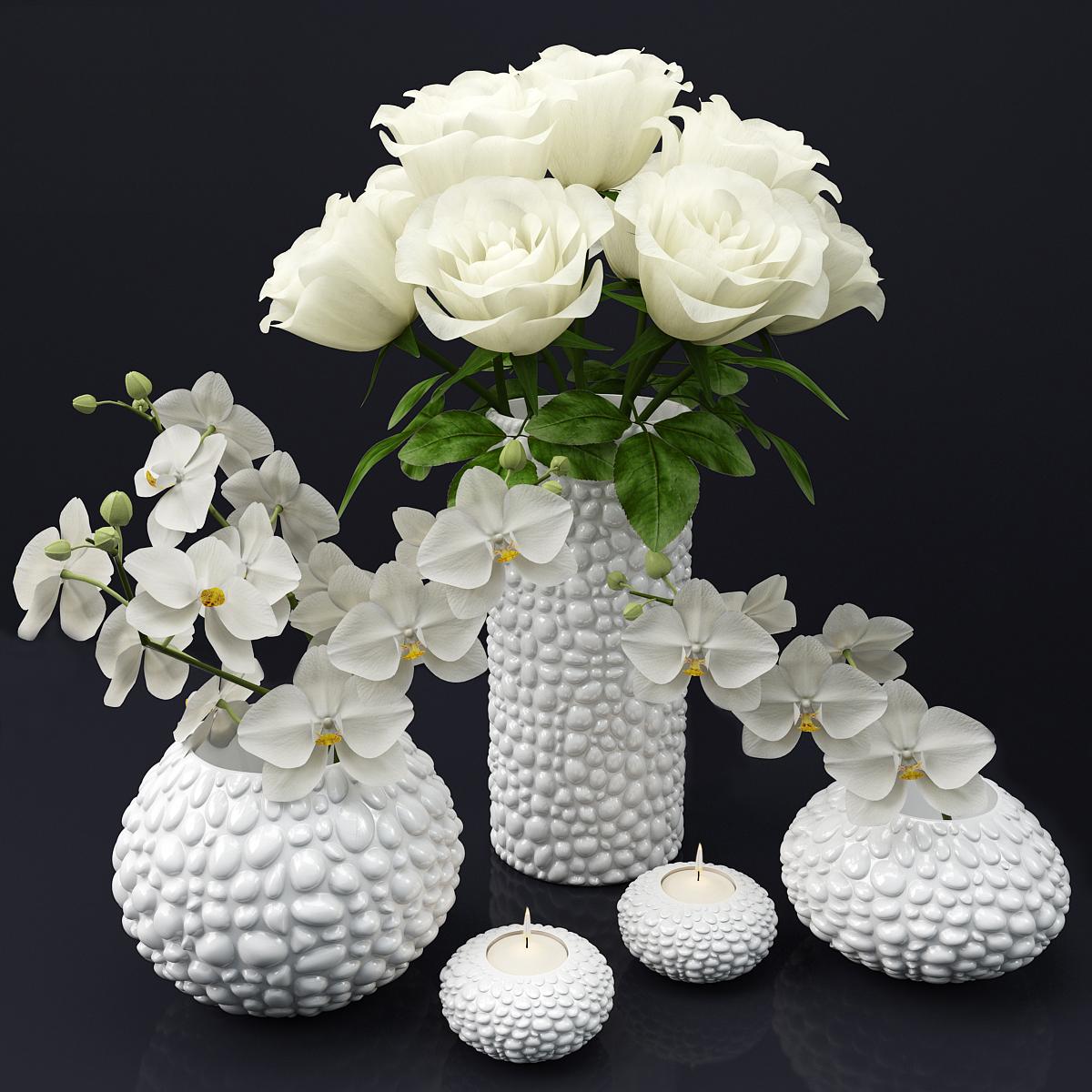 家居装饰花卉