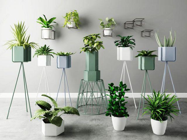 植物盆栽花架组合