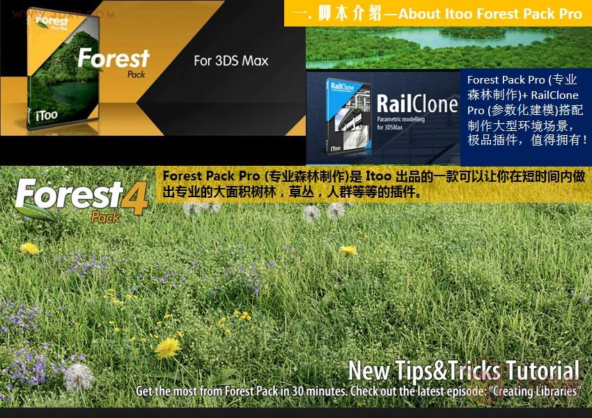 【脚本插件】专业森林树木植物插件 Itoo Forest Pack Pro Fo