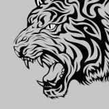 3D設計師TIGER2019