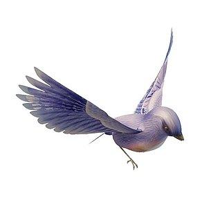 渐变紫色小鸟3d模型