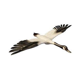 黑白拼色天鹅3d模型