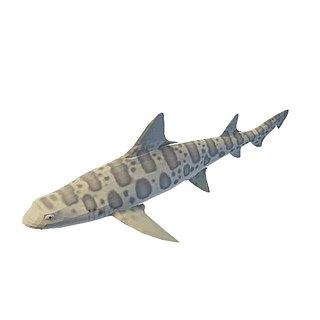 <font class='myIsRed'>飞机</font>鱼3d模型