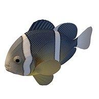 深海鱼3D模型3d模型