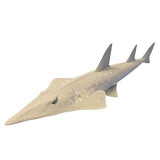 尖嘴鱼3d模型