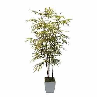 盆栽景观竹子3d模型