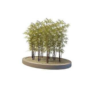 园林景观竹子3d模型