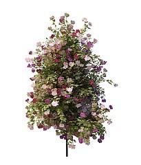 花树模型3d模型