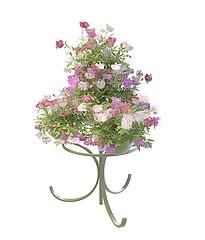 观赏花模型3d模型