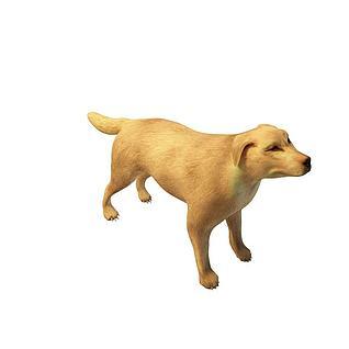 黄狗3d模型