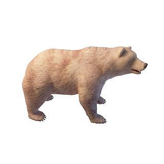<font class='myIsRed'>狗</font>熊3d模型