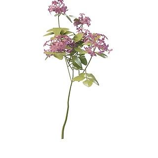粉色装饰花3d模型
