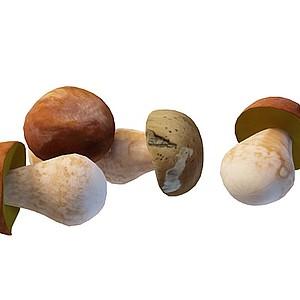 3d蘑菇模型