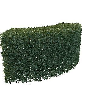 绿化<font class='myIsRed'>植物</font>3d模型