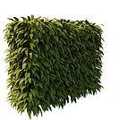 绿植墙模型