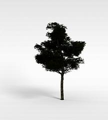 园林景观树木模型3d模型