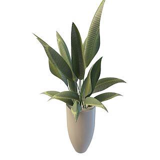 盆栽花瓶3d模型
