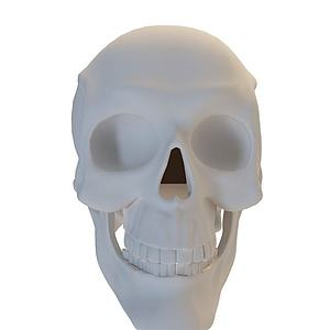 骷髅头模型3d模型