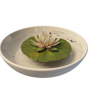 3d花盆模型
