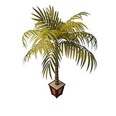 袖珍椰子树3D模型3d模型