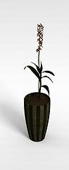 盆栽植物模型3d模型