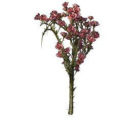 红花3d模型