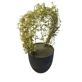 花藤盆栽3d模型