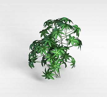 仿真观叶植物