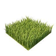 绿化草3D模型3d模型
