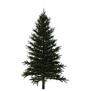 <font class='myIsRed'>圣诞</font>树3d模型