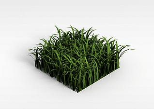 3d仿真草坪模型