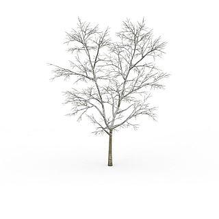 冬<font class='myIsRed'>树</font>3d模型