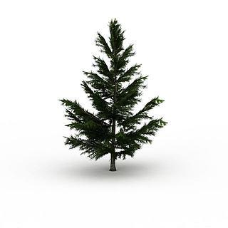 杉<font class='myIsRed'>树</font>3d模型