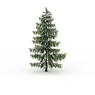 松<font class='myIsRed'>树</font>3d模型