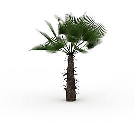 亚热带<font class='myIsRed'>树</font>3d模型