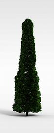 3d松<font class='myIsRed'>树</font>模型