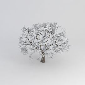 3d雪<font class='myIsRed'>树</font>模型