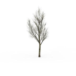 枯<font class='myIsRed'>树</font>3d模型