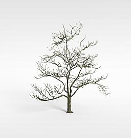 3d枯<font class='myIsRed'>树</font>模型