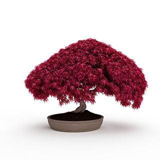 红色艺术盆景3d模型