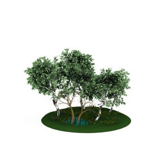 卡通树林场景3d模型