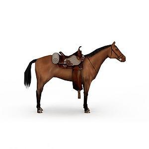 棕色馬模型