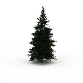 松树绿化3d模型