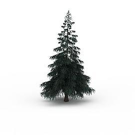 松树景观3d模型